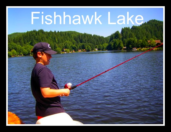 Questions About Fishhawk Lake (4/6)