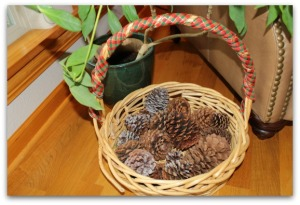 basket with pinecones in lakeroom 2012-12-18 15.37.46