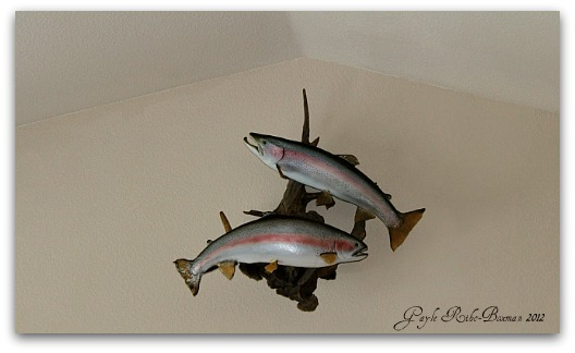 Fish art on wall in lakeroom 2012-12-090