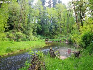 Year round creek to fish in, watch the wildlife, listen to, view from your many decks or sit and dabble your feet in!