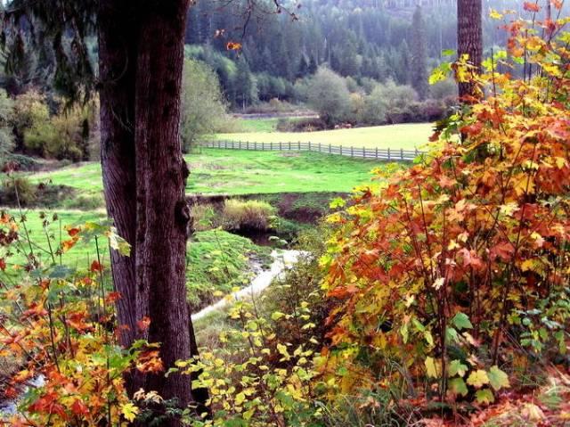 Berg farm in autumn