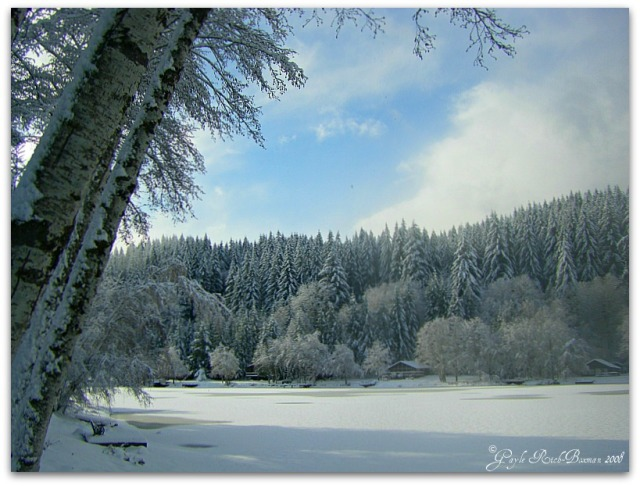 Winter on Fishhawk Lake 2008 Photographed by Gayle Rich-Boxman