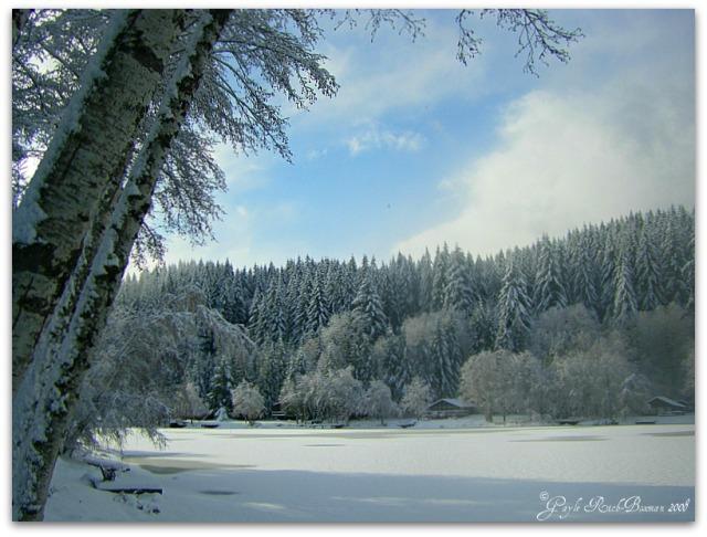 Winter on Fishhawk Lake 2008 Photographed by Gayle Rich-Boxman