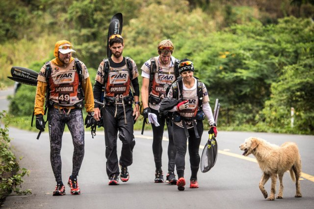 dog follows and joins swedish adventure race team  (5)