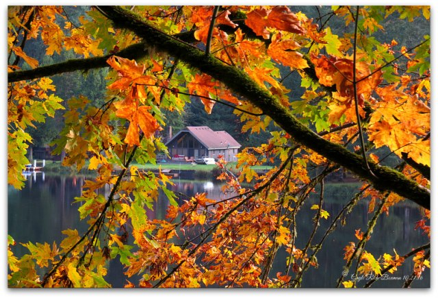 Autumn colors on Fishhawk Lake Photo by Gayle Rich-Boxman 10.16