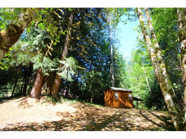 Shed located at vacant lot for sale by Gayle Rich-Boxman REALTOR® Vernonia Realty Direct: (503)755-2905